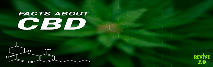 FAQS About CBD Recovery
